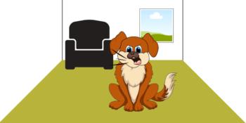 Hund bellt wenn alleine